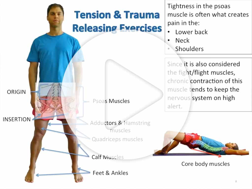 TRE® Tension & Trauma Releasing Exercises video preview image